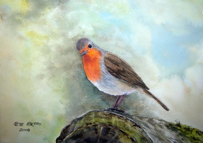 Where's My Mealworms? - Watercolour and pastel on Arches NOT paper. 140lb. 1/4 imperial.