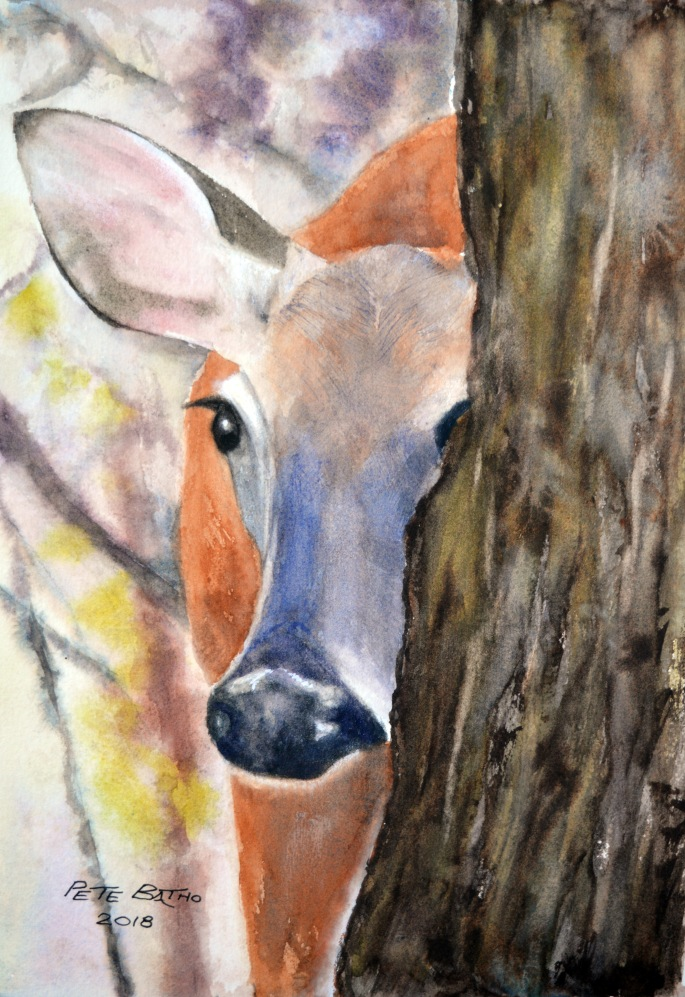 Peek-a-boo! Watercolour on Arches CP (NOT). 140lb. 1/4 imperial.