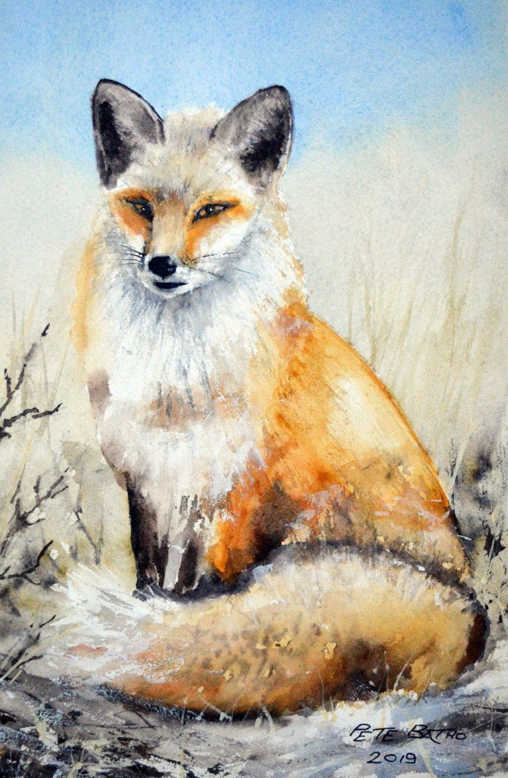 The Poser. Watercolour on Arches CP paper. 140lb. 1/4 imperial