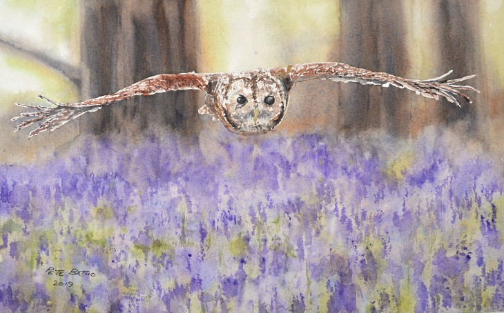 On Silent Wings. Watercolour on Arches CP paper. 1/2 imperial